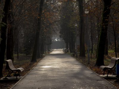 alee parc